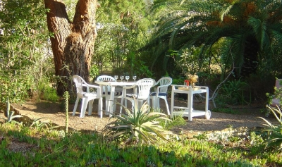 appartement locations de vacances CALVI
